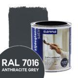 ral-7016 gamma